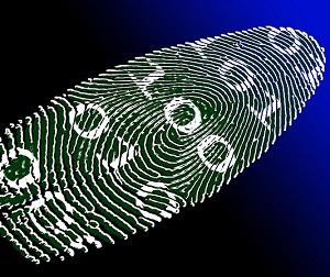 Ist Biometrie die Zukunft?